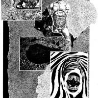 """Colagem de Manuel Pereira para o <em><a href=""""http://www.chilicomcarne.com/index.php?option=com_content&amp;task=view&amp;id=36&amp;Itemid=79"""">Futuro Primitivo</a></em> (Chili Com Carne; 2011)"""
